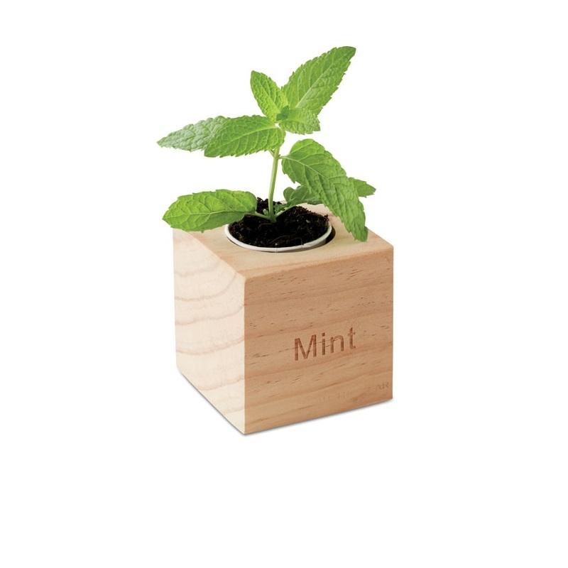 Vasetto in legno con semi di menta